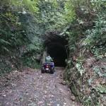 鹿野山 林道